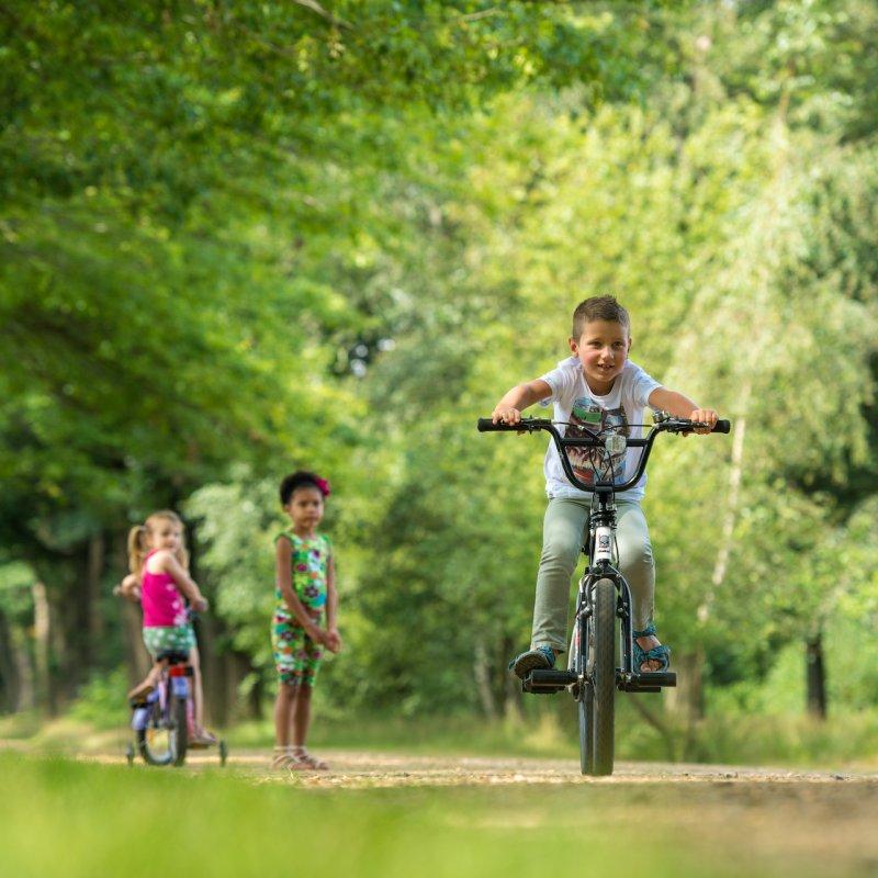 belgie;wortel;merksplas;kinderen;dreef;fietsen;2016;raf ketelslagers