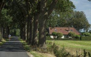 wilhelminaoord;nederland;boschoord;2016;James van Leuven